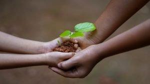 Hvordan kjøpe ESG fond impact investering aktivisme